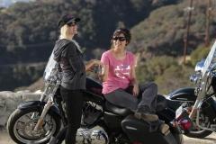 Harley Davidson Photo2